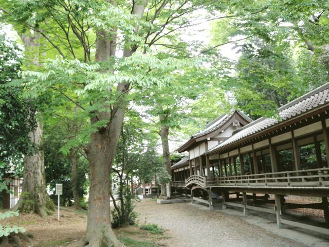 埼玉 県 観光 スポット